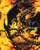 dragonwallpaper10.jpg
