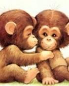 The Chimpanzee.jpg