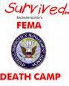 fema camp wallpaper 1