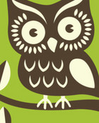 midnight-owl.jpg wallpaper 1