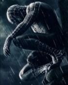 spider-man565411.jpg