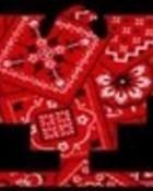 Red BaNdaNa Huelga Bird wallpaper 1