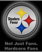 Steelers Fever