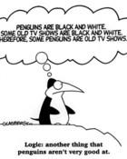 humor-penguin-logic.jpg