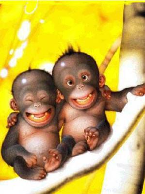 Free monkeys phone wallpaper by learnea