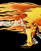 metallica-skull-flames.jpg