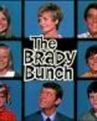 the Brady Bunch.jpg