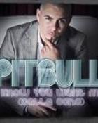 Pitbull 7.jpeg