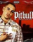 Pitbull 12.jpeg