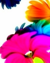 Free Abstract Flowers Colors phone wallpaper by gily28