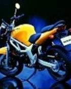 Suzuki%2001-128.jpg