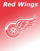 8_Detroit-Red-Wings-85891.jpg