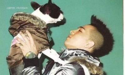Free Taeyang Puppy.jpg phone wallpaper by naninani89
