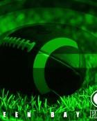 green-bay-packers-grass-1024x768.jpg