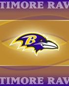 baltimore-ravens-golden-1024x768.jpg
