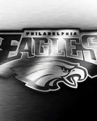 philadelphia-eagles-polished-1024x768.jpg
