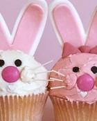 bunnycupcakes wallpaper 1