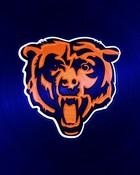 chicago_bears-head-ipad-1024emsteel.jpg