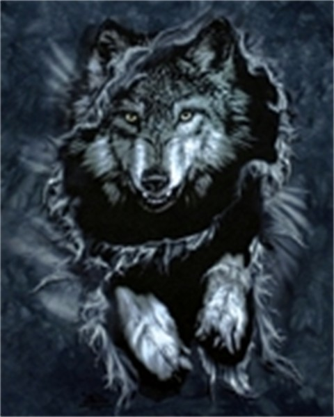 Free wolf phone wallpaper by dan_2