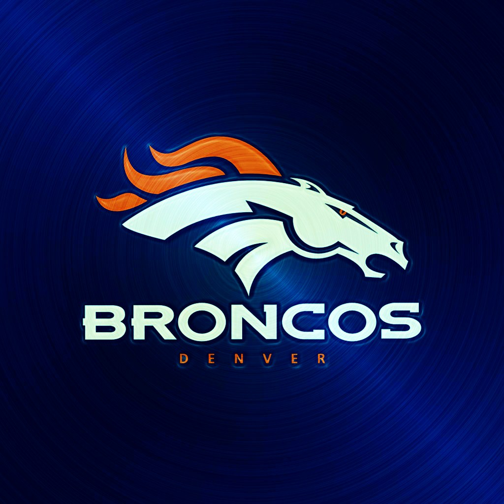 Free denver-broncos-horse-name-ipad-1024emsteel.jpg phone wallpaper by chucksta