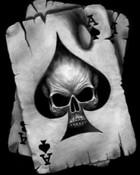 Ace & Skull