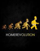 Homer evolutin