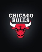 chicago-bulls iphone.jpg