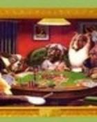Dogs Playin Poker.jpg