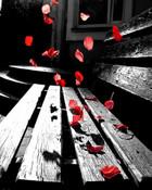 Romantic Bench wallpaper 1