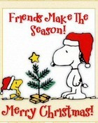 Merry Christmas Charlie Brown.jpg wallpaper 1