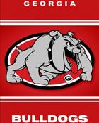 Georgia Bulldogs iphone