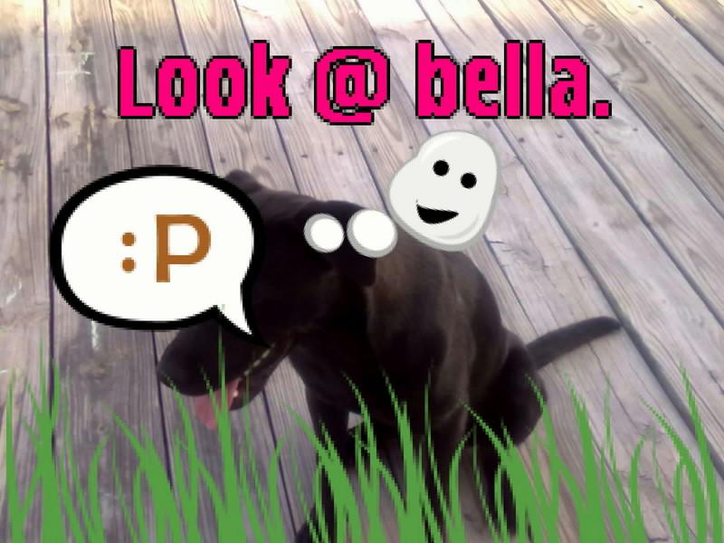 Free 04152010001-001.jpg phone wallpaper by chloecharles