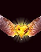 Eagle_Heart.jpg