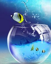 Free Windows_7_Wallpaper_-_Fish_Tank.jpg phone wallpaper by pinkrose2