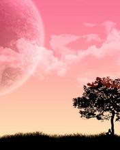 Free Windows_7_Wallpaper_-_Poets.jpg phone wallpaper by pinkrose2