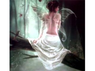 Free tree fairy.jpg phone wallpaper by ihaventaclue