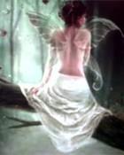 tree fairy.jpg