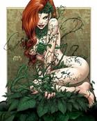5516-poison-ivy.jpg