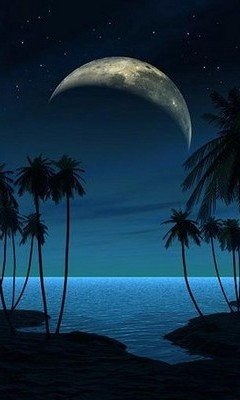 Free night-beach phone wallpaper by beckeroni