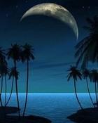 night-beach