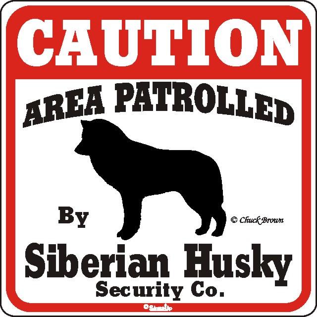 Free Area patrolled by husky.jpg phone wallpaper by mccheeseburger