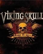 viking skull 2