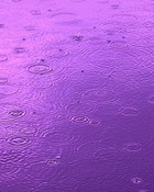 Purple Puddle.jpg wallpaper 1