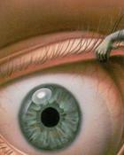 Eye-Demon.jpg