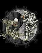 dragon14.jpg