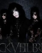 Black Veil Brides.jpg