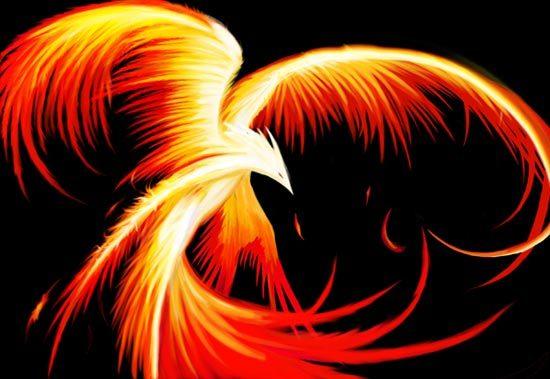 Free phoenix.jpg phone wallpaper by sexy_boy