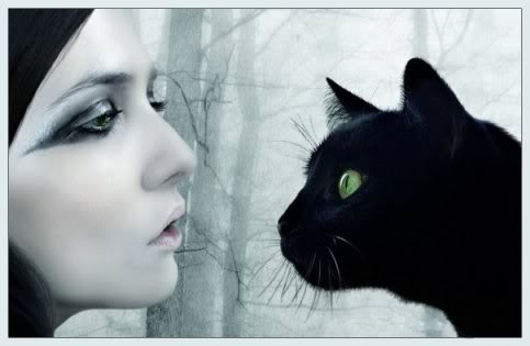 Free sad-goth-girl-with-the-cat.jpg phone wallpaper by sexy_boy