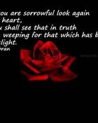 sad-love-poem.jpg