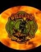 woodlandfire with fire bg.jpg